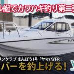 ヴェラシスマリーナレンタルボート YFR まんぼう1号釣り動画
